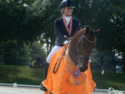 Figo ( Armani x Houston ) Nederlands Kampioen