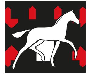 Logo Veulenveiling Dwingeloo